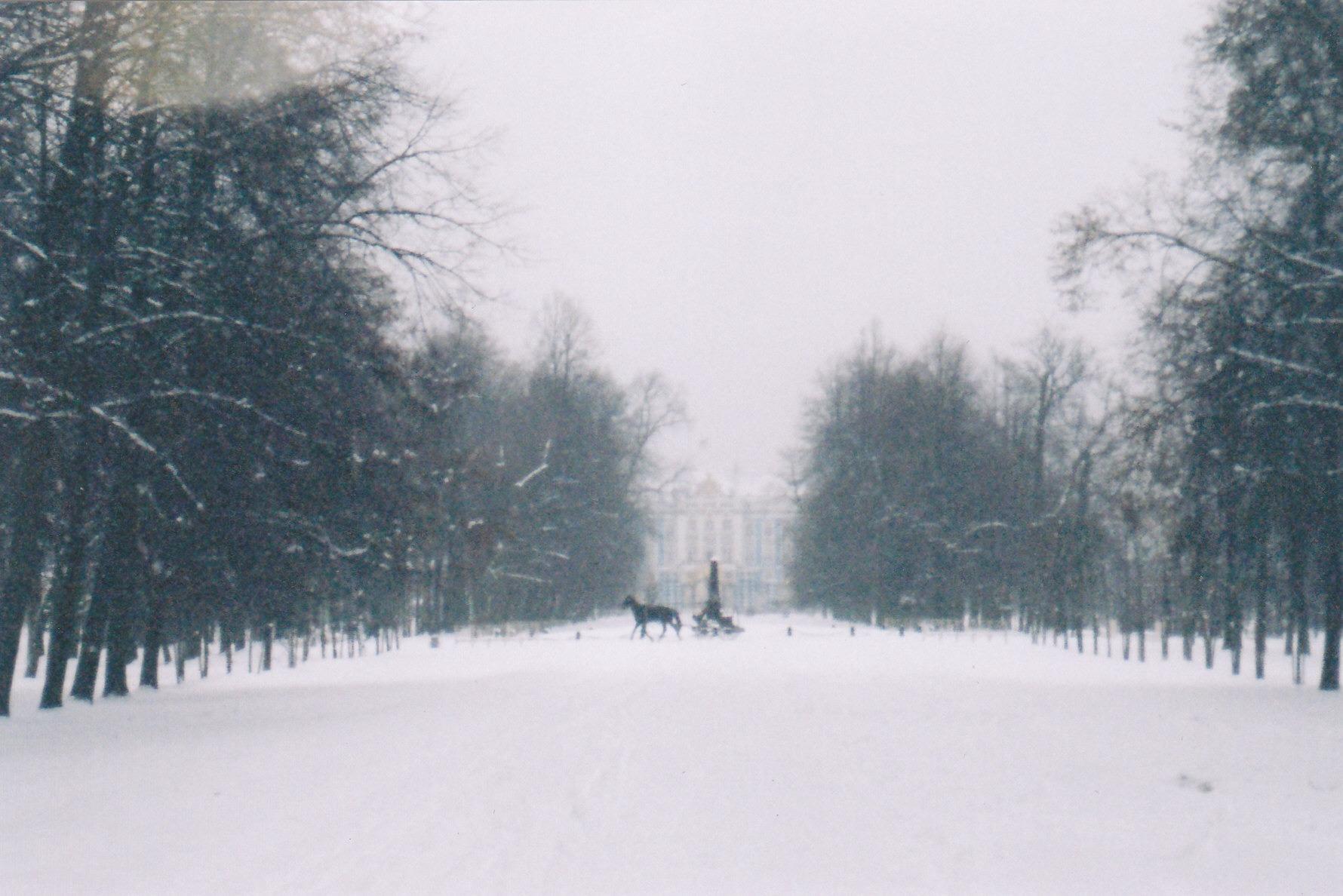 A rare snowy day