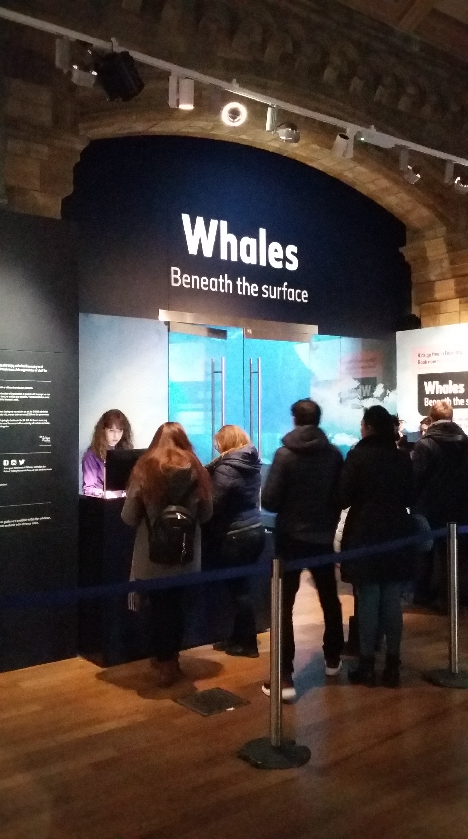 Whales exhibition