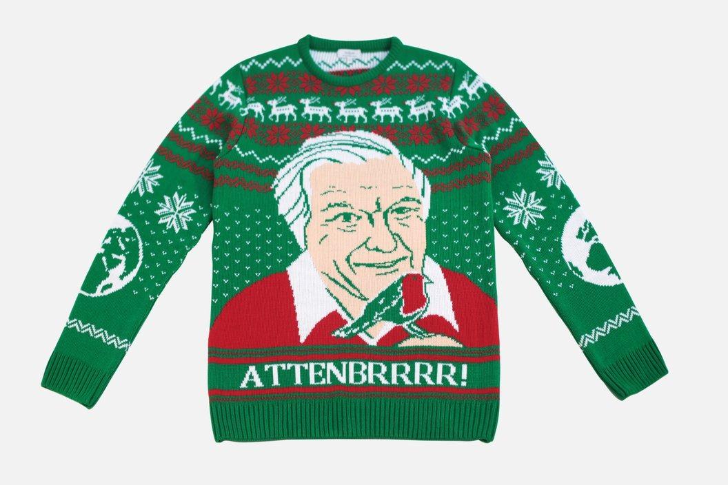Atttenbrrr Christmas Jumper